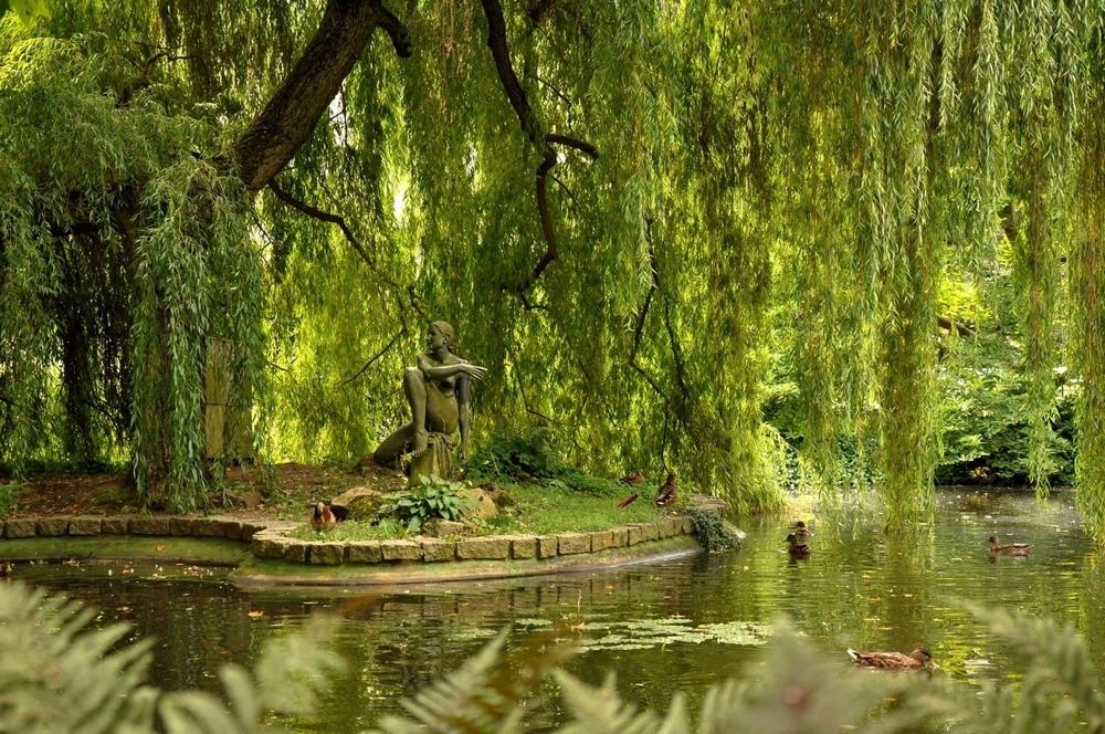 Дворжаковы Сады в Карловых Варах