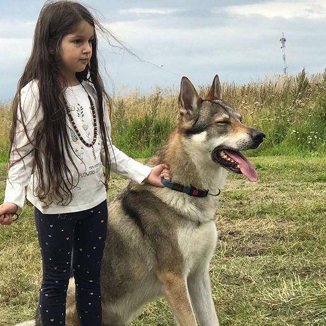 Волчья собака и дети